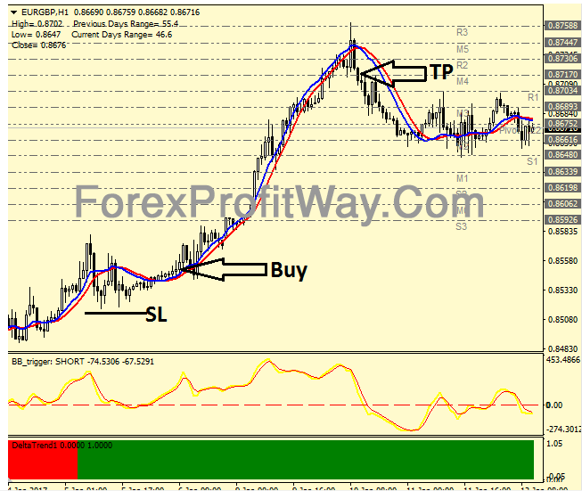 Download MT Hunter Forex Trading System Mt4