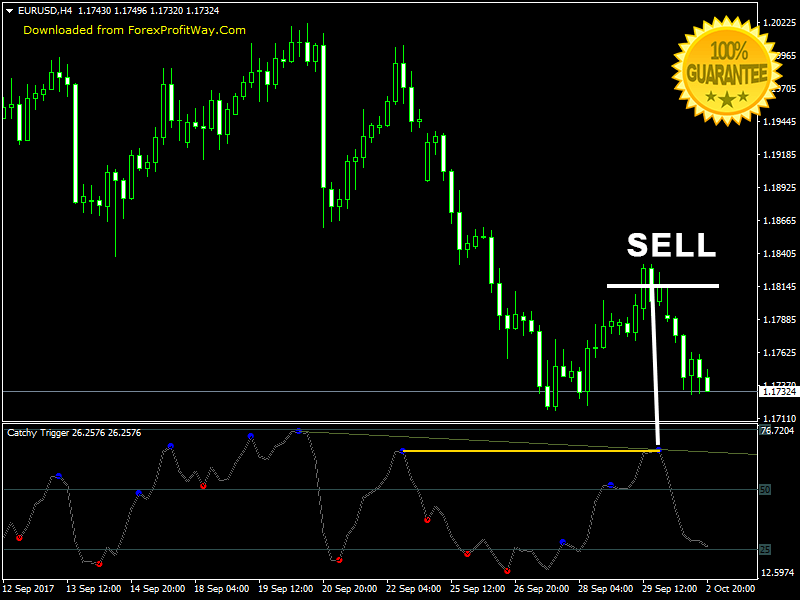 Binary Options Trading Forex Indicator